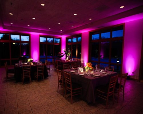 pink uplighting decor